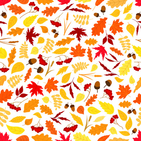 acorn tree: Autumn background with seamless pattern of orange, red and yellow fallen leaves, acorns, dry herbs and branches of rowanberry fruits. Nature theme design