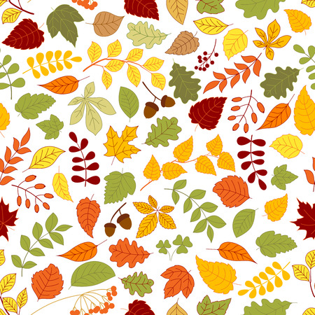 rowanberry: Autumn fallen leaves, branches of atumnal trees, acorns, rowanberry fruits and seeds of wild herbs seamless pattern on white background Illustration