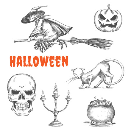 magic cauldron: Halloween witch flying on broom, scary pumpkin with fire eyes, black cat, human skeleton skull, candlestick, cauldron with boiling magic potion. Halloween decoration symbols in pencil sketch