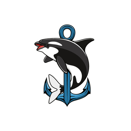 Killer Whale and Anchor icon. Heraldic emblem. Vector nautical shield for template, t-shirt, sign Illustration