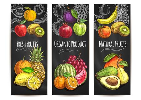 Frutas orgánicas naturales frescas. iconos del vector del bosquejo del color de pera, naranja, aguacate, manzana, melocotón, plátano, kiwi, limón, mango, piña, sandía ciruela granada de uva por cartel de la etiqueta bebida de jugo Foto de archivo - 62639726