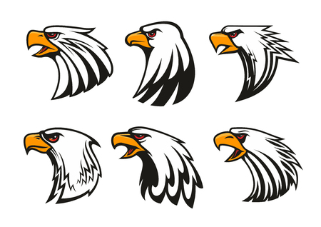 brave of sport: Bald Eagle icons set. Vector emblems of hawk with beak, harsh crying, furious glance. Falcon label for team mascot shield, badge, sport, guard, club identity label Illustration