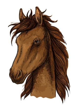 mane: Brown proud horse artistic portrait. Brown mustang stallion with wavy mane, calm look, black eyes Illustration