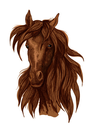 Brown horse artistic portrait. Mustang with long wavy flying mane looking straight forward Illustration