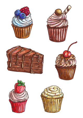 pastel de chocolate: Delicioso pastel de chocolate y la magdalena bocetos cubierto con vainilla, sabor a fruta y crema de menta, glaseado de chocolate, cereza dulce, fresa y frambuesa frutas, rollo de la oblea, asperja Vectores