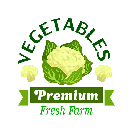 fresh vegetable: Fresh farm vegetables badge of cauliflower vegetable with green leaves, flanked by inflorescences and ribbon banner with text Premium. Farm market, agriculture and food packaging design