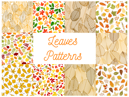 rowanberry: Autumn fallen leaves seamless patterns set with autumnal foliage and branches of forest trees, acorn, rowanberry fruit. Autumn season theme, scrapbook page backdrop design