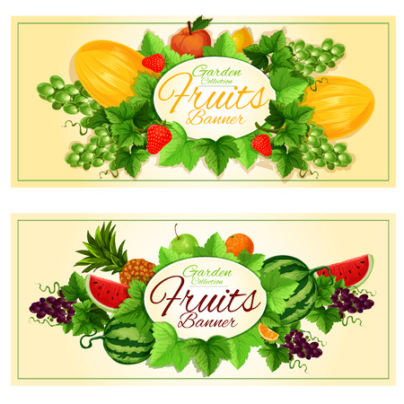 sappy: Fruits banners with oval badge framed by fresh apple, orange, pineapple, lemon, strawberry, melon, green and violet grapes, watermelon fruits, sappy green leaves and grapevine
