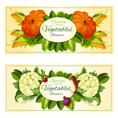 Vegetables and salad greens banners with broccoli, onion, corn, radish, chilli pepper, lettuce, pumpkin, cauliflower, spinach and watercress leaves placed around oval badge with copy space Illustration