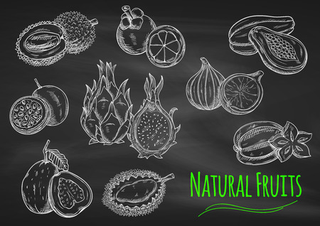 fruit: Chalk sketches of exotic fruits on blackboard with star fruit, papaya, guava, passion fruit, dragon fruit, lychee, mangosteen, fig and durian fruits