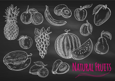 apple isolated: Fruits chalk sketch on blackboard. Isolated vector icons of exotic and tropical pineapple, orange, apple, melon, lemon, banana, grape, avocado, watermelon, kiwi, apricot peach mango pear plum