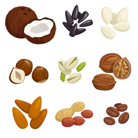 pumpkin seeds: Nuts, grain and kernels. Vector icons of coconut, almond, pistachio, sunflower seeds, pumpkin seeds, peanut, hazelnut walnut coffee beans