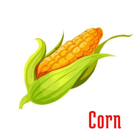 sign store: Corn ear plant icon. Isolated leafy vegetable green element. Vegetarian maize product sign for sticker, grocery shop, farm store