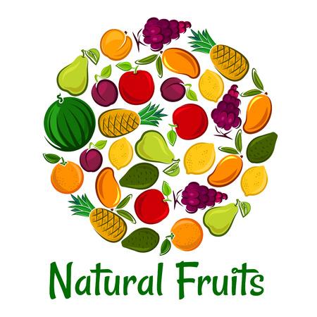 grape fruit: Fruits placard background. Vector round shape wallpaper of natural fruit icons watermelon, grape, pineapple, apricot, mango, avocado, pear, apple plum
