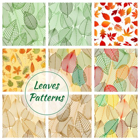 leaf line: Leaves seamless patterns. Set of vector pattern with leaf icons of oak, rowan, elm, maple. Stylized line grid of plant leaf for decorative background