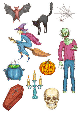 flying coffin: Halloween walking undead zombie, witch flying on broom, vampire coffin, pumpkin, cauldron potion, candle stick, skull, black hag cat, spider web, bat. Halloween elements for posters, cards banners