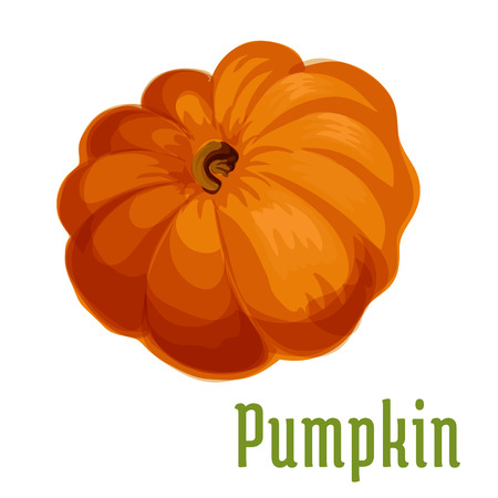 sign store: Pumpkin plant icon. Isolated vegetable emblem. Vegetarian product sign for sticker, grocery shop, farm store