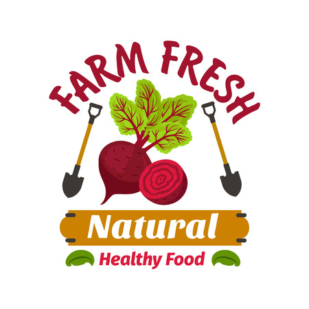 haulm: Beet. Farm fresh vegetable product emblem. Healthy vegan food icon with beetroot leaves haulm and spades. Vector vegetable label for vegetarian product sticker, grocery farm store, packaging