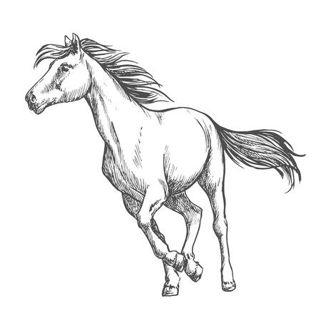 freely: White horse running freely.