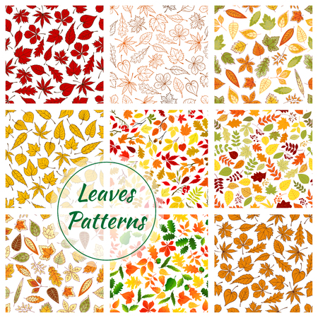 aspen leaf: Seamless pattern of leaves. Color elements of birch, rowan, maple, elm, polar, oak, aspen leaf icons. Autumn forest foliage fall decorative background with silhouette, outline, linear shapes