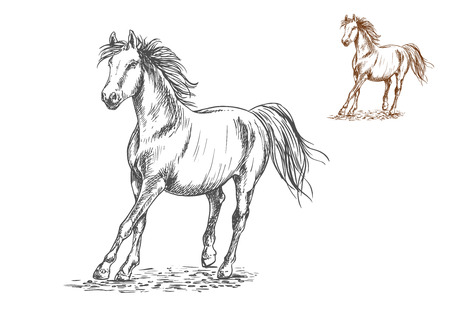 Running white and brown horses.