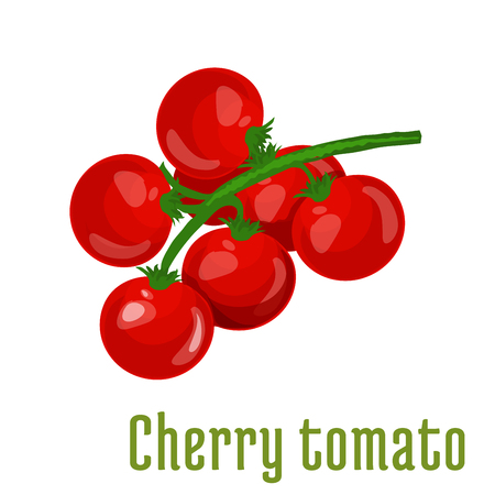 tomatoes: Cherry tomato vegetable icon. Bunch of cherry tomatoes on stem with leaves. Fresh food product element for sticker, grocery shop, farm store element