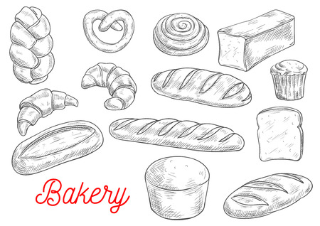 buns: Sketched wheat bread, croissant and baguette, cupcake, cinnamon roll, toast and ciabatta, pretzel, braided bun and long loaf. Bakery and pastry shop food packaging design