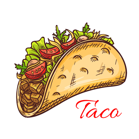 Mexican beef taco with fresh vegetables sketch of crispy corn tortilla filled with meat, tomato, pepper and salad greens. Mexican cuisine restaurant, fast food menu design  イラスト・ベクター素材