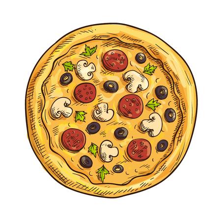 ペパロニ ソーセージ、黒オリーブ、マッシュルーム、バジルとイタリアのピザのスケッチ。ピザ、イタリア料理レストラン、テイクアウトのピザ箱  イラスト・ベクター素材