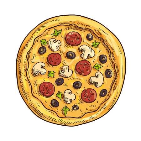 pizza ingredients: Italian pizza sketch with pepperoni sausage, black olive fruit, mushroom and basil. Pizzeria, italian cuisine restaurant, takeaway pizza box design