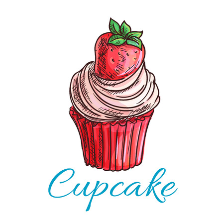 berry fruit: Strawberry cupcake or muffin sketch, decorated with pink berry cream and fresh strawberry fruit. Pastry and bakery shop, cafe menu, breakfast dessert design Illustration