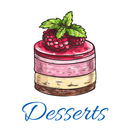sponge cake: Fruit dessert or berry cake sketch icon with chocolate biscuit and sponge cake base, fruit cream filling and top with raspberry and berry jelly. Dessert recipe, pastry shop and cafe menu design Illustration