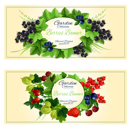 Berries banners with fresh strawberry, cherry, blueberry, black and red currant, gooseberry and briar fruits, branches and leaves arranged around a frame with copy space