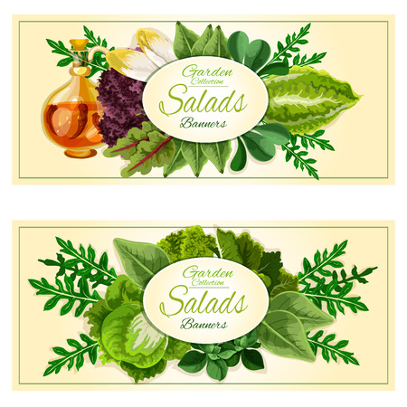 vegetable garden: Salad greens and vegetables banners set with green sappy leaves of lettuce, cabbage, spinach, arugula, watercress, iceberg, endive, chard, kale with infused olive oil with chilli