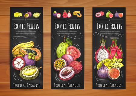 Exóticas frutas tropicales pancartas con la papaya, carambola, guayaba, el mangostán, fruta de la pasión, lichi, higo, fruta de dragón y fruta durian. Coctel tropical, postre vegetariano, diseño de envases de alimentos
