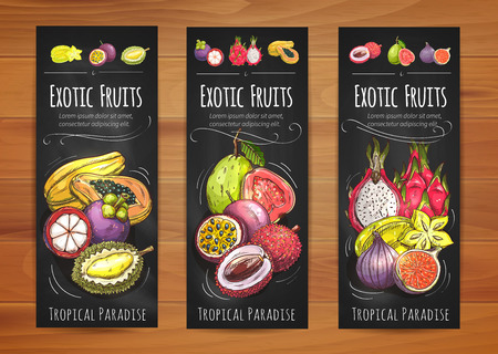 Exotic tropical fruits banners with papaya, star fruit, guava, mangosteen, passion fruit, lychee, fig, dragon fruit and durian fruits. Tropical cocktail, vegetarian dessert, food packaging design 版權商用圖片 - 64152931
