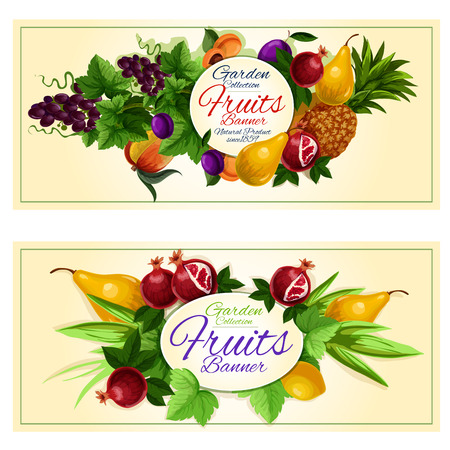 grape juice: Sweet summer fruits banners set of fresh peach, grape, pineapple, lemon, plum, pear, apricot and pomegranate fruits with green leaves and tendrils of grapevine Illustration