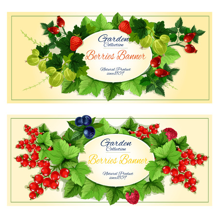 Healthy garden fruits and berries banners of strawberry, raspberry, blueberry, red currant, gooseberry and briar fruits on green leafy branches with oval badge for your text