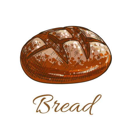 bun: Bread loaf icon for bakery shop emblem. Round rye bread bun. Vector color pencil sketch Illustration