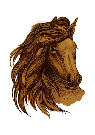 looking straight: Arabian horse portrait. Brown mustang head with wavy mane strands flying against wind and shining proud eyes