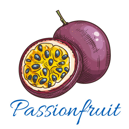 Passion fruit vector color sketch icon. Isolated whole and half cut passionfruit. Maracuja fruit product emblem for juice or jam label, sticker, farm store design element Illustration