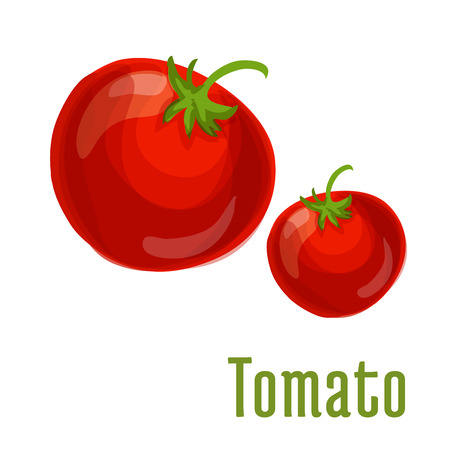 fresh vegetable: Tomato vegetable icon. Isolated tomatoes with stem and leaves. Fresh food product element for sticker, grocery shop, farm store element Illustration