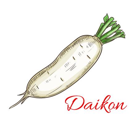 Daikon plantaardig pictogram. Geïsoleerde Daikon Radish root. Vegetarisch vers voedselproduct teken voor sticker, kruidenierswinkel, boerderijwinkel element