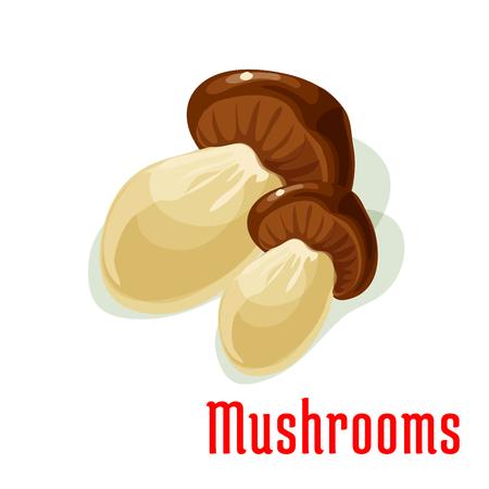 edible mushroom: Boletus edible mushroom isolated cartoon icon. Delicious ripe forest porcini with broad brown cap. Healthy vegetarian food, recipe design Illustration