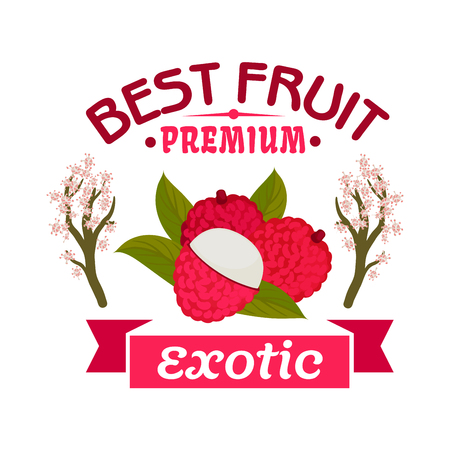lichee: Exotic lychee fruit emblem of tropical ripe litchi with green leaves, framed by blooming lichee trees and pink ribbon banner. Farm market, food and juice packaging design