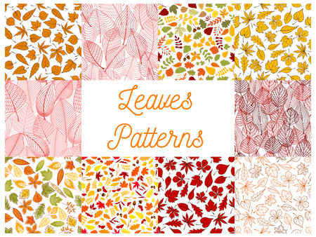 Autumn leaves seamless patterns set with fruits and seeds. Red, orange and yellow autumnal fallen leaves, acorns, rowanberry fruits and dry herbs on white background