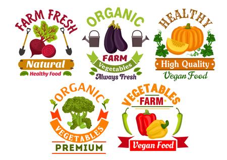 berenjena: vegetales orgánicos saludables escudos insignias conjunto de pimiento fresco granja, brócoli, berenjena, calabaza y remolacha verduras con hojas, banderas de la cinta, palas, regadera