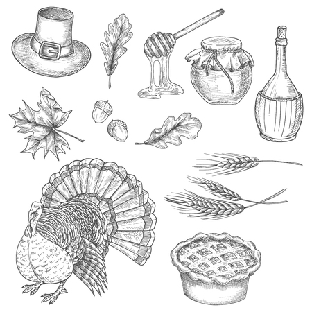 abundance: Thanksgiving traditional food abundance symbols of turkey bird, sweet pie, wheat ears, honey sticks, vine, pilgrim hat, acorns, oak and maple leaves. Vector doodle sketch icons for greeting cards, invitation