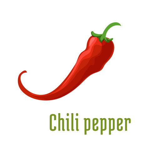 cayenne: Red chili pepper vegetable icon. Fresh pod of spicy chilli or cayenne pepper for mexican cuisine, agriculture harvest or farm market design