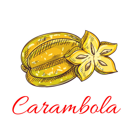 Tropical carambola fruit isolated sketch of exotic yellow starfruit with fresh juicy slice. Cocktail, vegetarian dessert menu, juice packaging design Illustration